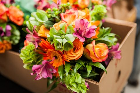 The importance of flowers in our lives
